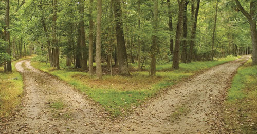 road-of-choices-500x261